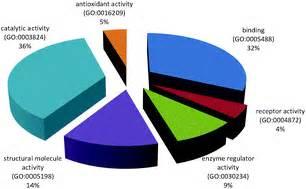 Critique of Quantitative Research - Term Paper